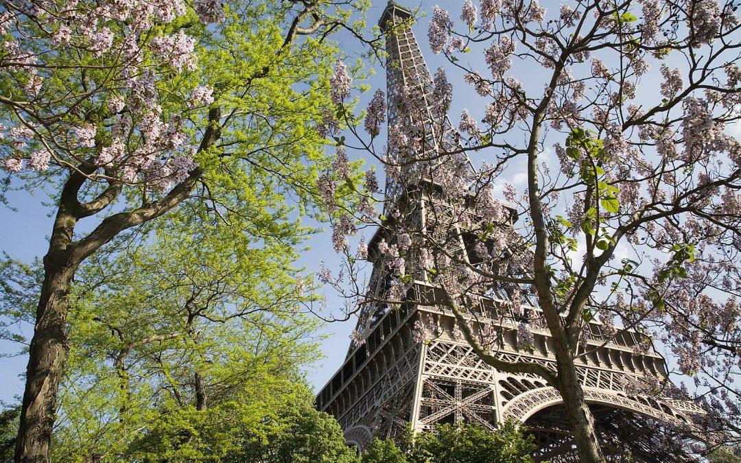 Les balades romantiques à faire à Paris pour profiter du printemps